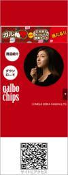 galbo chips